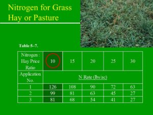 Nitrogen Recommendation Based on Ratio