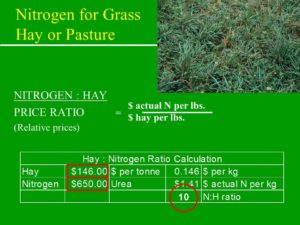 Nitrogen to Ration Calculation