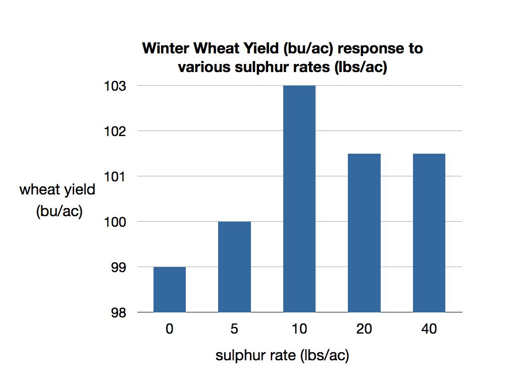sulphur_wheat_final.001