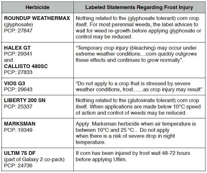 Frost Guidelines for Corn Herbicides_2013
