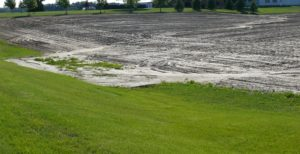 Severe soil erosion following 100 mm rain  in conventionally tilled  Norfolk field.