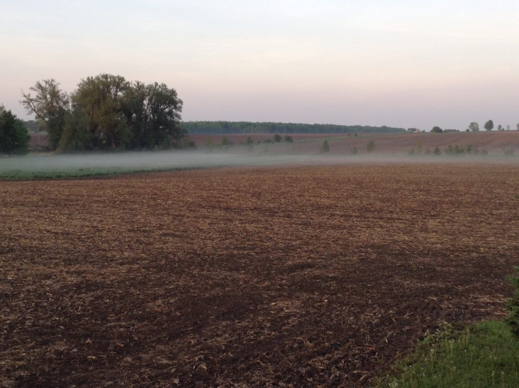 """A """"dead calm"""" morning with fog indicating a temperature inversion and conditions where pesticides should not be applied."""