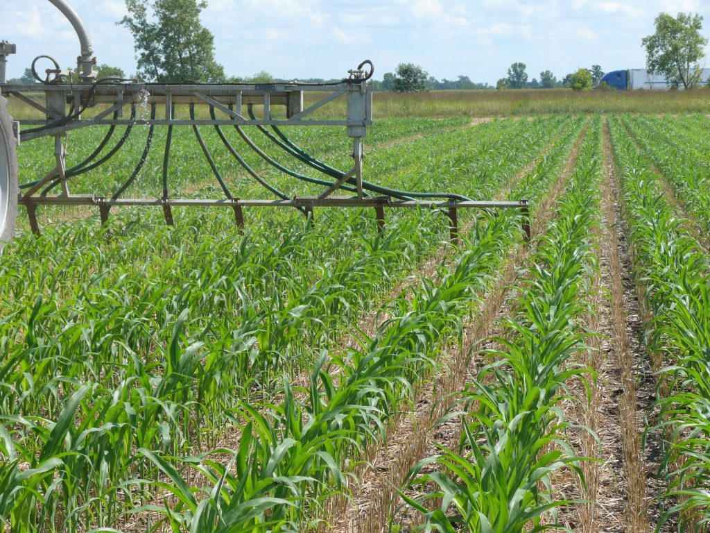 Figure 4: Toolbar options that include dribble bars or shallow injection tools to apply into standing corn up to side-dress timing. Specialty tool bars are being designed to allow cover crop seeding to occur with manure application.