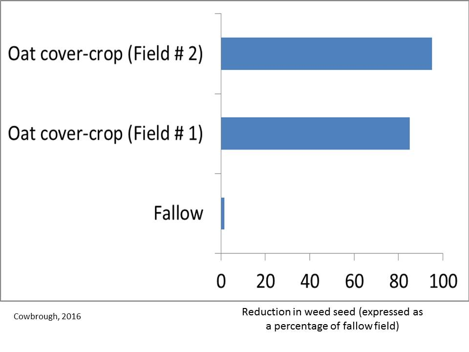 The above graph illustrates the reduction in weed seed produced in each field by taking dry weight of seed heads and comparing each field as a percentage of the fallow field.