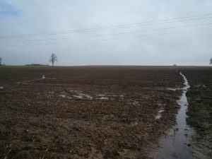 Figure 1. A long slope on a field near Port Colborne, Ontario in late January. With minimal residue cover, water picked up momentum and eroded soil along the entire length.