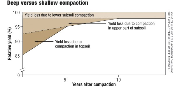 Yield loss due to compaction can persist for many years (Hakaansson and Reeder (1994) and Duiker (2004))