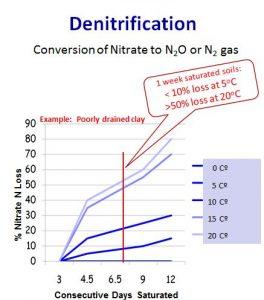 denitrification graphic
