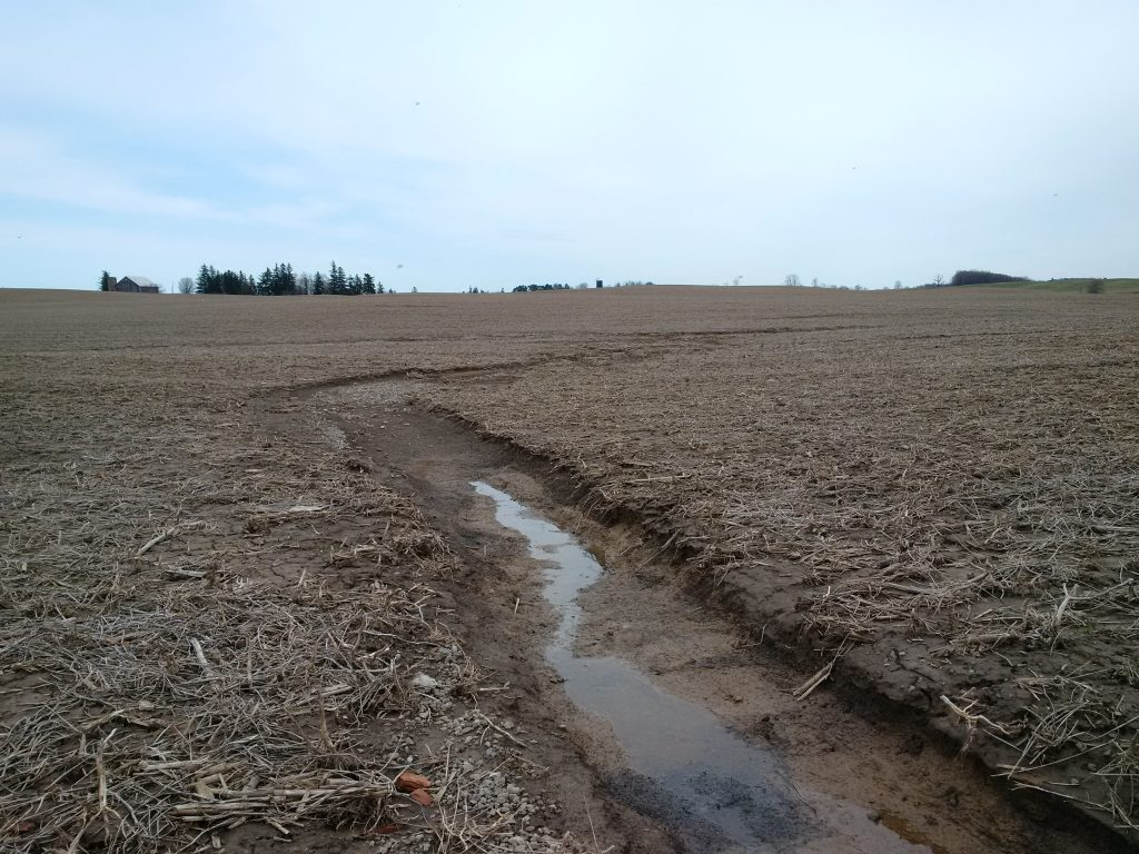 The effects of spring runoff on a farm field in the 2017. The soil lost to water erosion carries phosphorus with it.