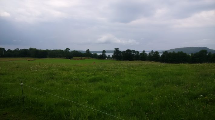 sloping pasture