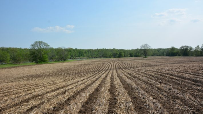 strip-tillage