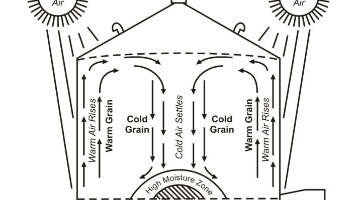 Diagram of a grain bin showing cool air settling down through the centre of a cold grain mass and rising up the inside wall of a grain bin being warmed by the sun, resulting in a zone of high moisture at the bottom of the bin in the centre.
