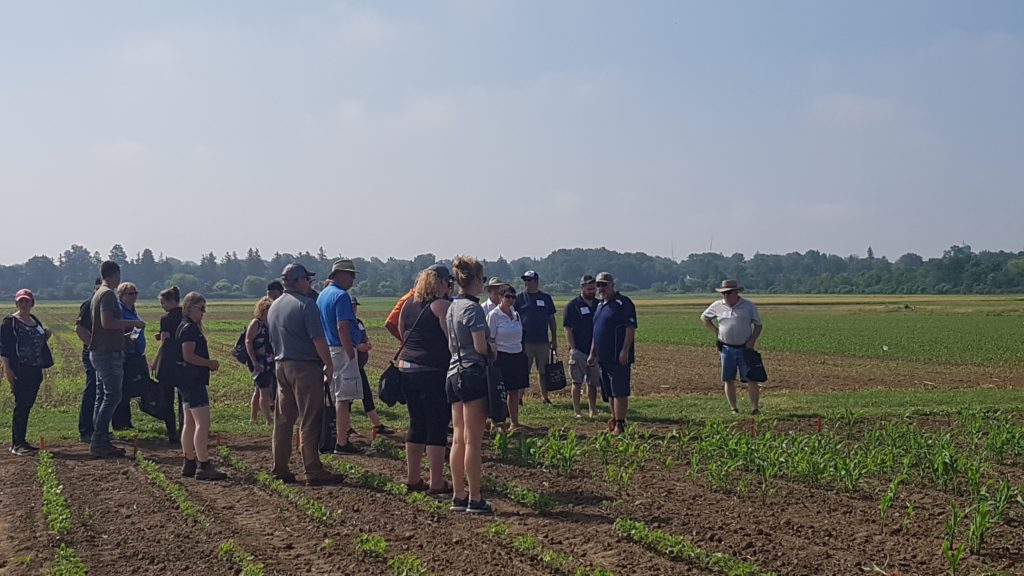 1. Demonstration events at Southwest Crops Diagnostic Days this week in Ridgetown (Photo: Tracey Baute, Entomologist Field Crops, OMAFRA)