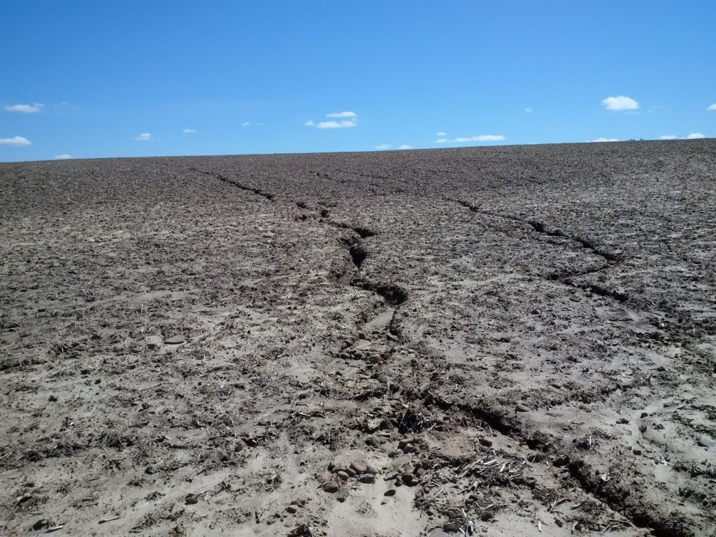 rill erosion on a steeply sloped field