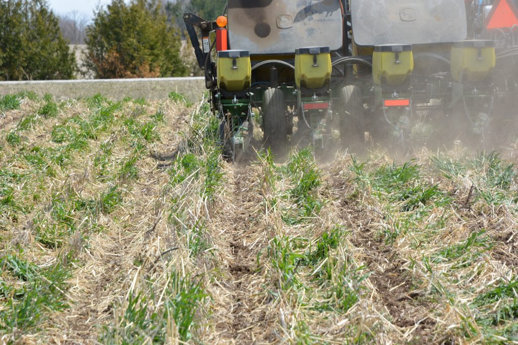 Figure 2. Corn planting into bio-strips, in Huron county on April 26th.