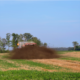 Figure 1: Dairy Manure being applied to a cover crop in late summer