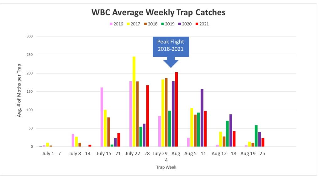 Figure 1. Weekly WBC trap catches for Ontario. Peak flight occurred during the week of July 29th to August 4th.