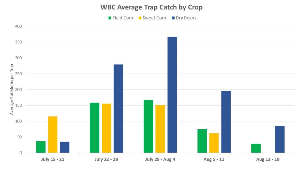 Figure 2. WBC trap catch by host crop. Dry bean and field corn traps peaked during the week of July 29-Aug 4th, while sweet corn traps peaked one week earlier.